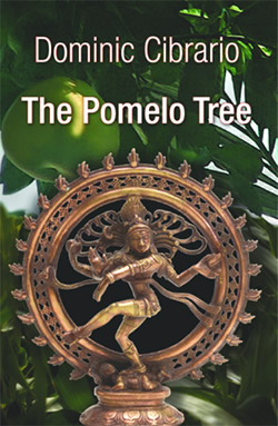the cover of 'The Pomelo Tree'; designed by Jon Bolton